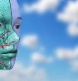 La Paralisi del Facciale e Agopuntura: considerazioni di un agopuntore
